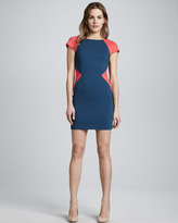 Erin Fetherston Fitted Colorblock Dress