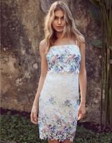 Lipsy Floral Print Lace Bodycon Dress