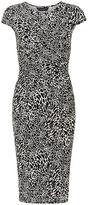 Dorothy Perkins Animal wrap midi tube dress