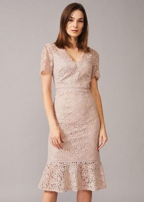 Phase Eight Lorella Lace Dress