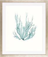 "Art Virtuoso Blue Seaweeds, Medium Framed Art Print, 25""x29.75"""