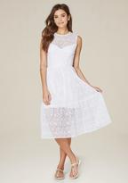 Bebe Meilee Lace Tiered Dress