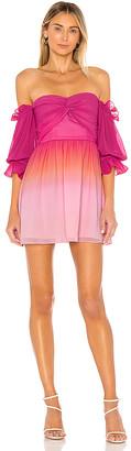 Lovers + Friends Camila Mini Dress