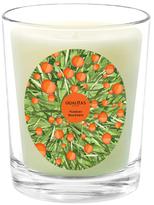 Qualitas Candles Verdant Mandarin Candle