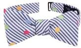 Ted Baker Men's Fun Stripe Silk & Cotton Tie