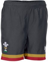 Under Armour Boys' WRU Supporters 15/16 Shorts
