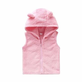 DQCUTE Boys Girls Autumn Winter Warm Kids Vests Cartoon Zipper Outerwear Sleeveless Hooded Jackets Gilets