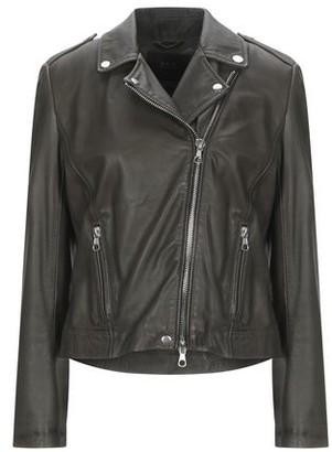 SET Jacket