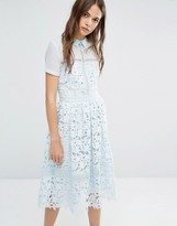 Warehouse Lace Collar Dress