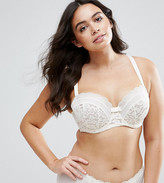 City Chic Nocturne Bra
