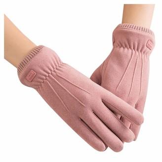 xuebinghualoll Women's Gloves Winter Warm Touch Screen Thick Gloves Windproof Fleece Lined Gloves