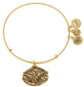 Alex and Ani Guardian of Freedom Expandable Wire Bangle