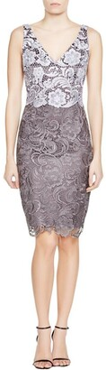 Adrianna Papell Women's Color Blocked Guioure Lace Dress