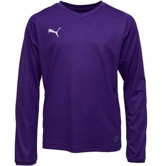 Puma Junior Boys Liga Core Long Sleeve Jersey Prism Violet White