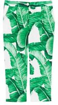 Dolce & Gabbana Women's Banana-Leaf-Print Poplin Pants-GREEN