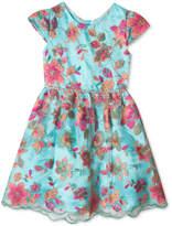 Rare Editions Embroidered Mesh Dress, Big Girls