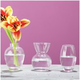Twos Company Two's Company Bud Vases In Gift Box, Includes 3 Assorted Shapes, Hand Blown Glass, Set of 3