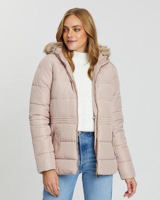 Dorothy Perkins Short Padded Coat