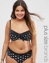 Marie Meili Katana Plus Size Polka Dot Bikini Top