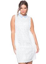 ELOQUII Plus Size Studio Collared Crochet Dress