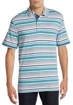 Saks Fifth Avenue BLACK Multistriped Pima Cotton Polo Shirt