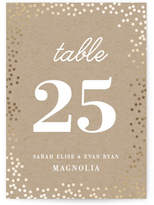 Minted Starlight Foil-pressed Table Numbers
