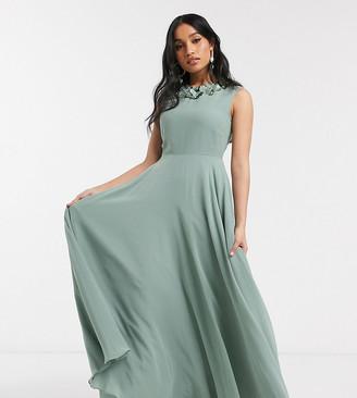 Asos DESIGN Petite maxi dress with 3D floral embellished neckline