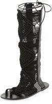 Ivy Kirzhner Seville Macramé Tall Gladiator Sandal, Black