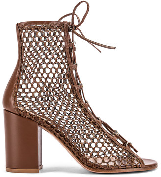Gianvito Rossi Lace Up Booties in Cuoio | FWRD