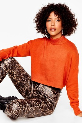 Nasty Gal Womens Ain't No Croppin' Us Knitted High Neck Sweater - Rust
