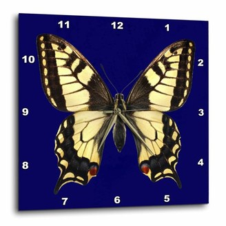 3drose 3dRose Black and yellow butterfly. Navy background. Decor., Wall Clock, 13 by 13-inch