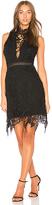 Astr Felicity Dress in Black. - size L (also in M,S,XS)