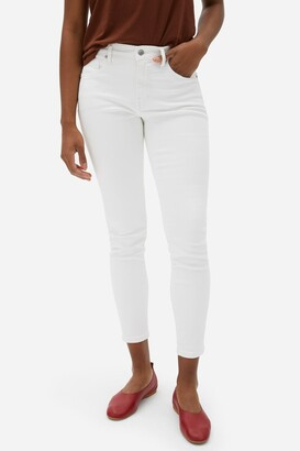 Everlane The Authentic Stretch Mid Rise Skinny Crop Jeans