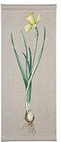 Flowering Wall Art - Daffodil