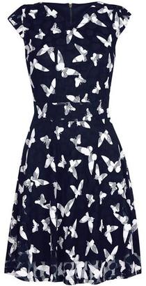 Yumi Curves In Flight Butterfly Skater Dress