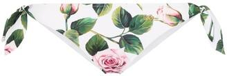 Dolce & Gabbana Rose print bikini bottoms