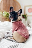 FP Pet Project Womens ARROW PRINT DOGGIE TEE