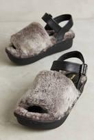 All Black Shearling Platform Slippers