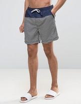 Selected Swim Shorts in Stripe