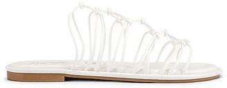Seychelles Authentic Sandal