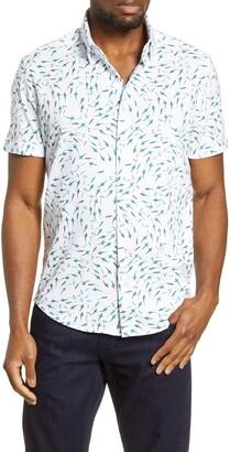 Stone Rose Shark Print Short Sleeve Button-Up Performance Knit Shirt