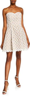 Aijek Faith Strapless Embroidered Corset Fit-&-Flare Dress