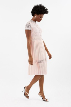 Coast Lace Bodice Pleat Skirt Dress