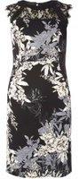 Dorothy Perkins Womens Petite Black Floral Scuba Lace Dress- Black
