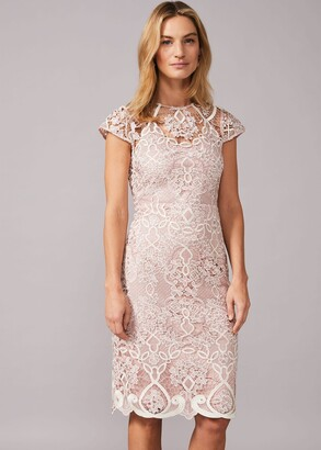 Phase Eight Frances Lace Fitted Dress