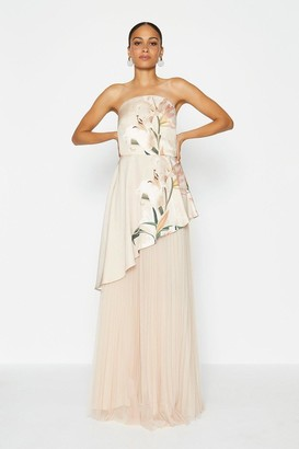 Coast Bandeau Mesh Maxi Dress
