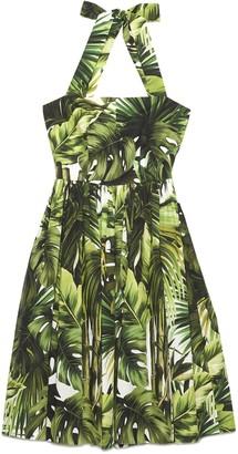 Dolce & Gabbana Jungle Print Poplin Dress