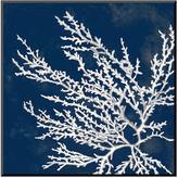 """Art.com Coastal Coral I"""" Wall Art"""