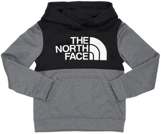 The North Face Surgent P/o Block Sweatshirt Hoodie