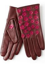 Echo Winter Touch Gloves